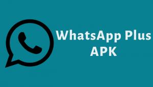 3 Fungsi Lain WhatsApp yang Tidak Banyak Orang Mengetahuinya